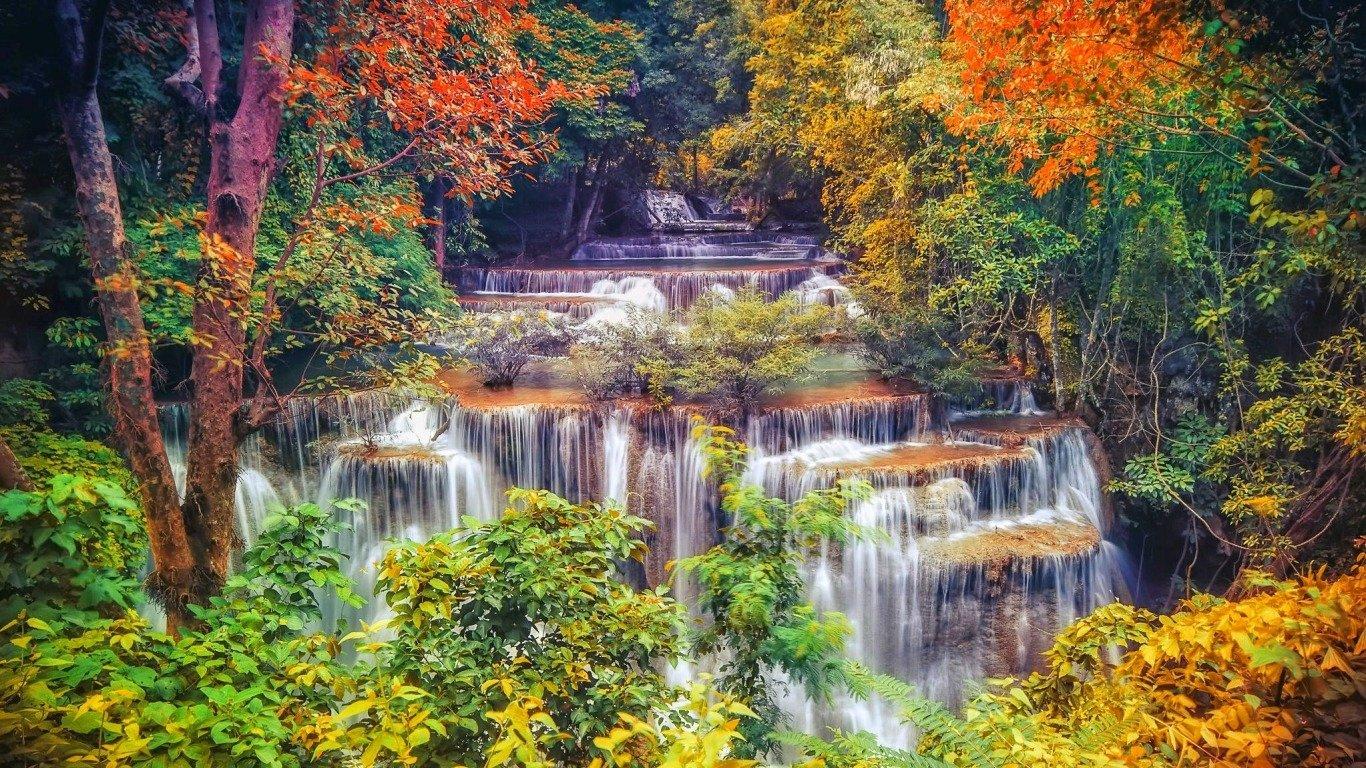 Fall Wallpaper.jpg